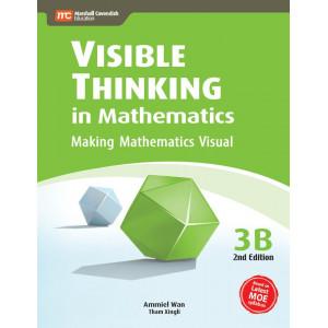 Visible Thinking in Mathematics 3B