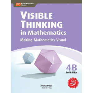 Visible Thinking In Mathematics 4B