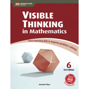 Visible Thinking in Mathematics 6